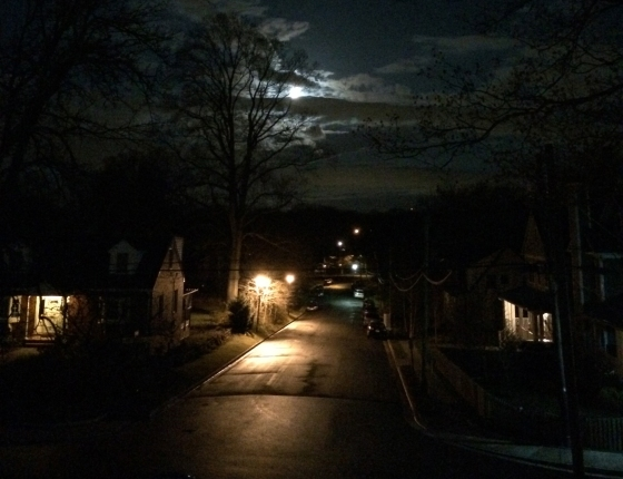 """Beyond the confines of brick and glass, in the 2:00 a.m. blackness, the streetlight beckoned."""